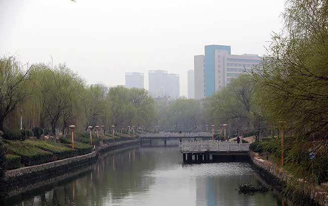 安徽涡阳:河岸柳依依