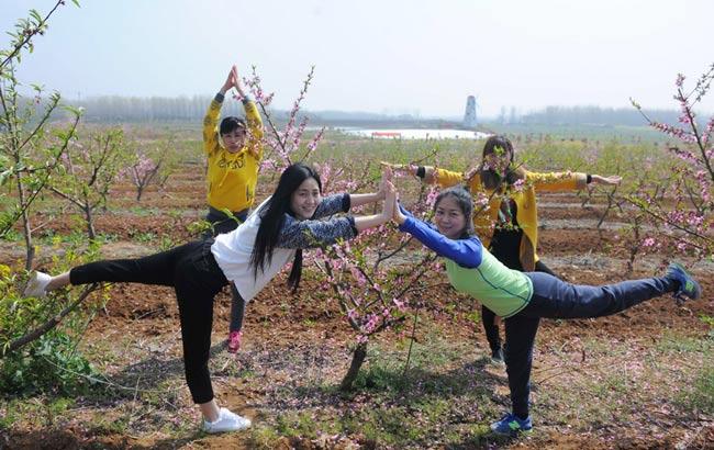 安徽滁州:清明踏青赏花忙