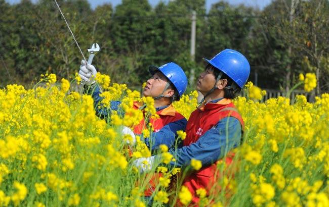 安徽滁州:农村电网升级保用电